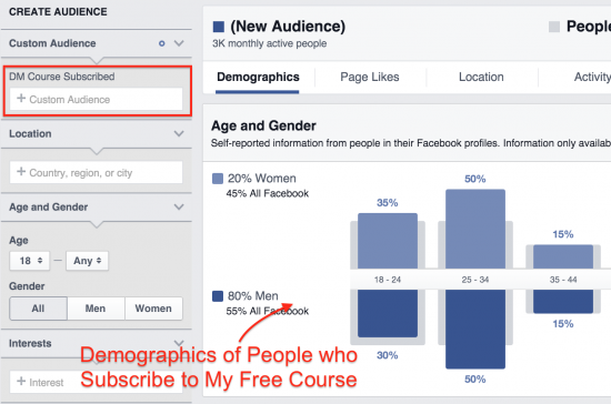 custom audience insights fb