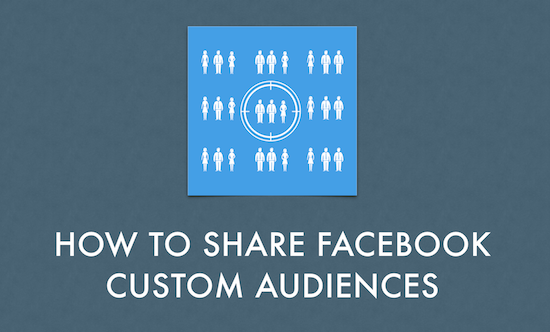 share custom audiences